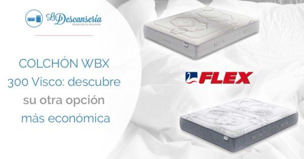 Wbx 300 Visco VS Colchón Palace Visco de Flex